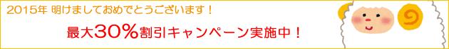 【延長決定!】2015年 新春割引キャンペーン